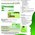 Kursus Salon Kecantikan – Pahe 6 : Rp 2,500.000 BODY SPA: Body Peeling Body Massage Body Sauna Ratus – V Treatment Perawatan Payudara Body Mask Milk Bath Manicure Pedicure Nail […]